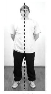 Wing Chun Wing Tsun Kung Fu Lyon ligne médiane