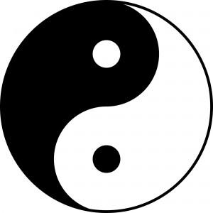 Yin Yang Wing Chun Wing Tsun Kung Fu Lyon