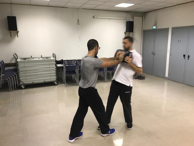 wing chun kung fu lyon